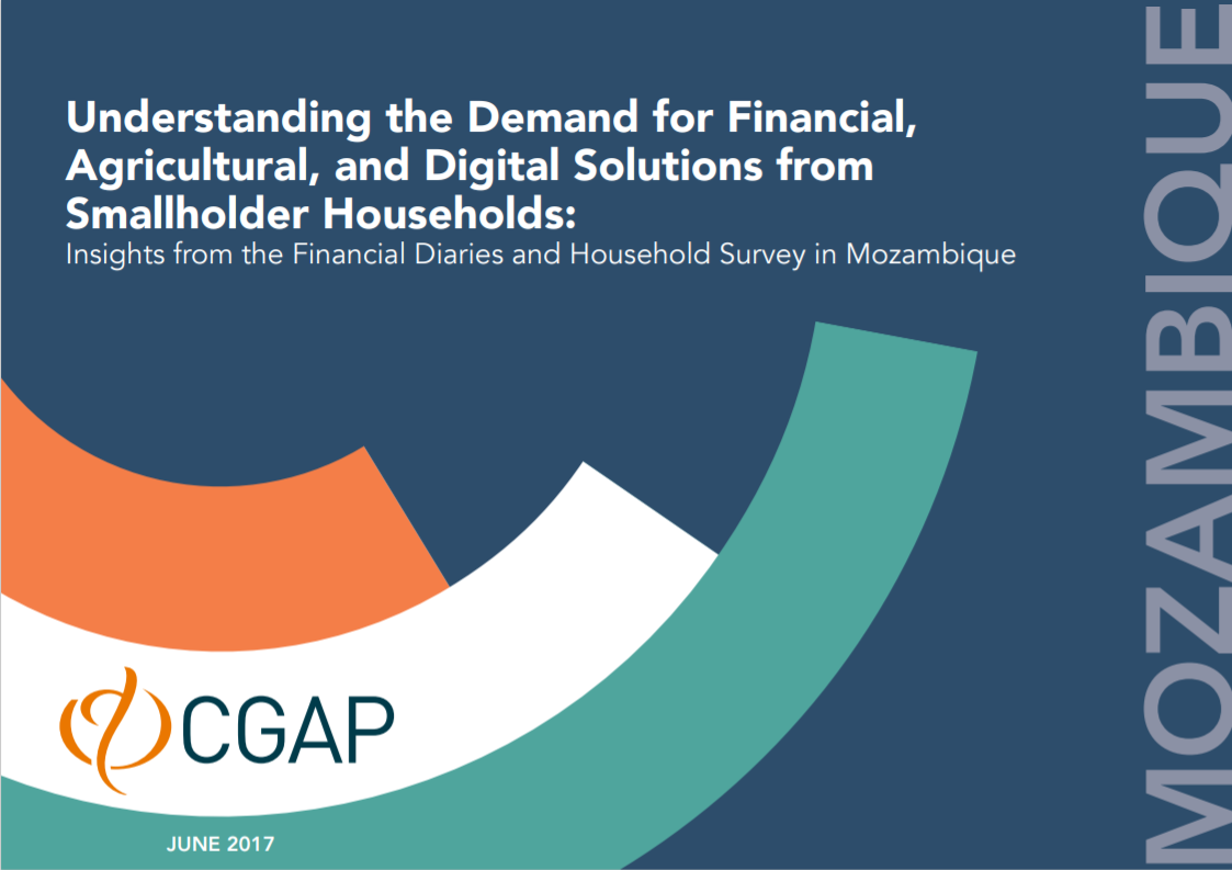 CGAP_Insights From Smallholder Household Survey Mozambique Cover