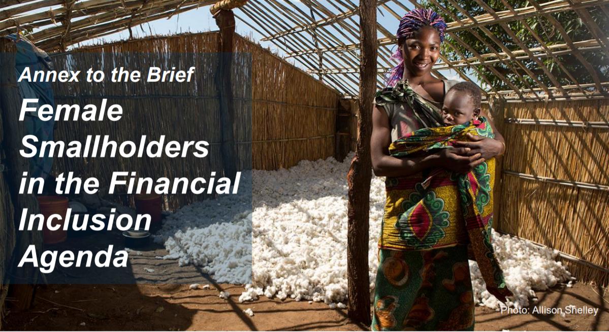 CGAP_Presentation Female Smallholders In The Financial Inclusion Agenda Cover