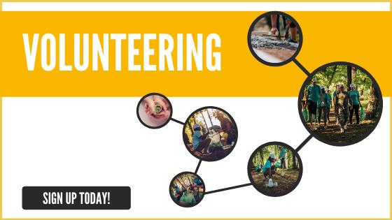helios cta for volunteers v3